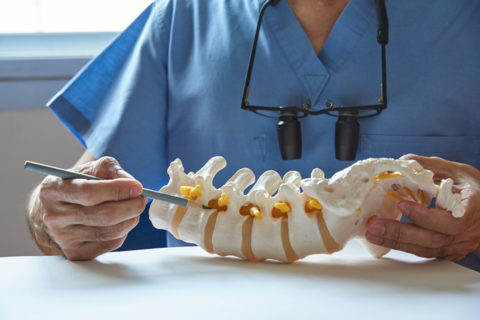 Chiropractic diagnosing the spinal cord